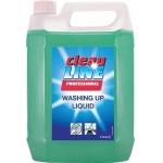 Washing Up Liquid 5ltr Image