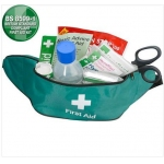 Travel First Aid Kit in Green Hip Bag Image